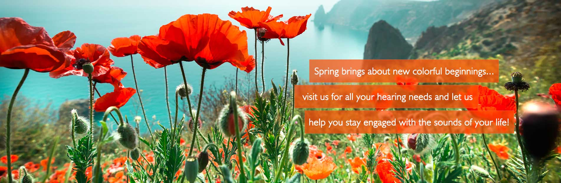 Spring Banner - Hear 4 U Audiology